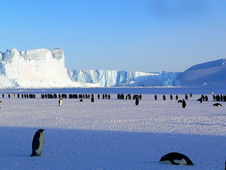 Чем грозит человечеству обнаруженная в Антарктиде радиация