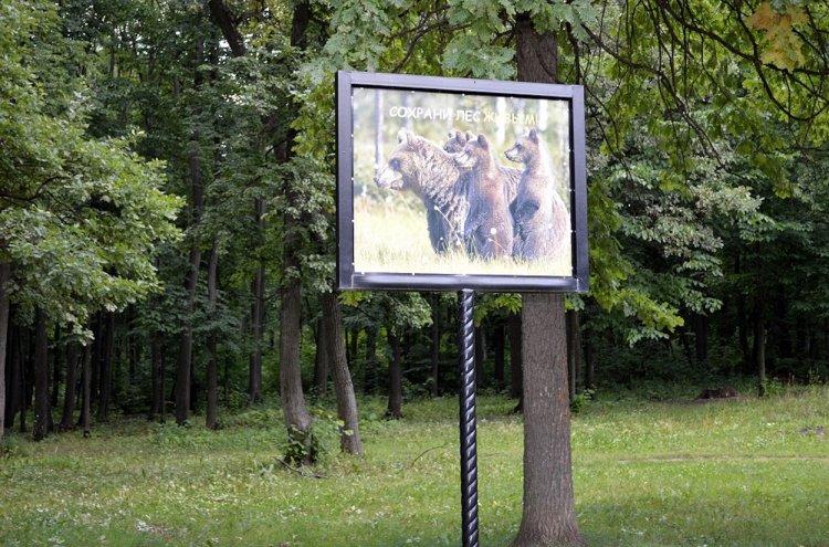 Власти Башкирии обсудили ход реализации регионального проекта «Сохранение лесов»