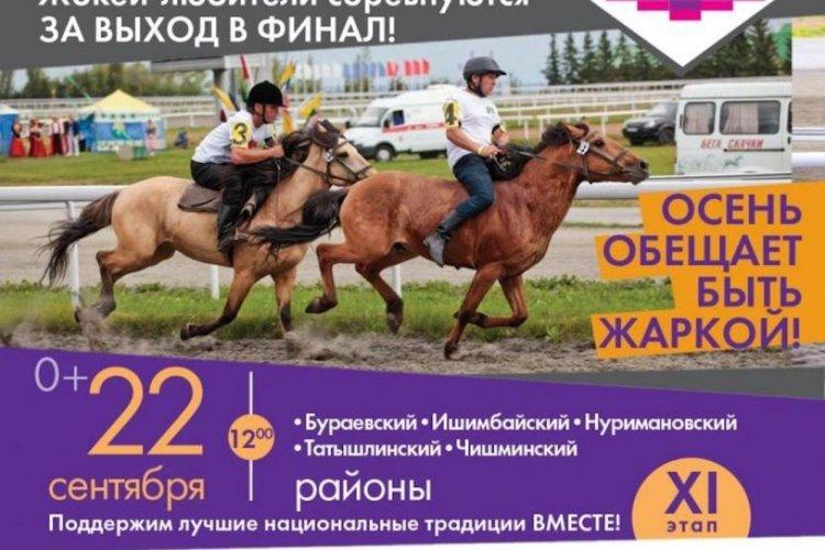 На ипподроме «Акбузат» состоится одиннадцатый этап турнира «Терра Башкирия»