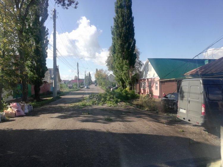 В Башкирии сильнейший ветер срывает кровлю и валит деревья