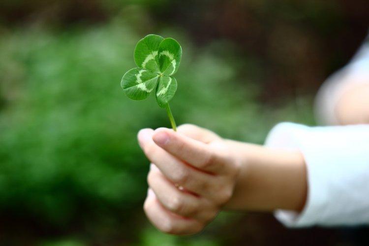 Как привлечь удачу: 4 простых совета