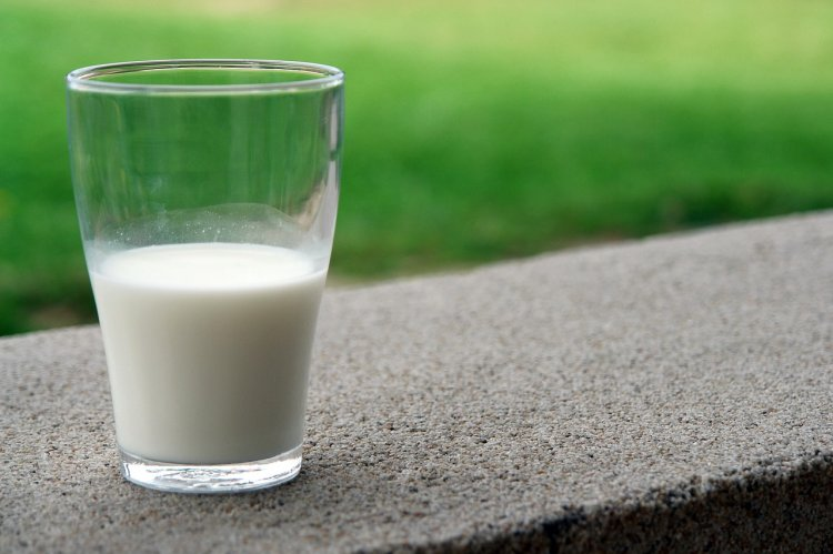 Минсельхоз РБ: надои молока на корову в Башкирии превысили 4200 килограммов