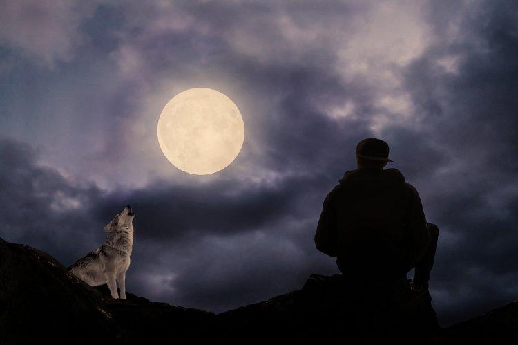 Осеннее полнолуние: почему астрологи называют 14 октября опасным днем