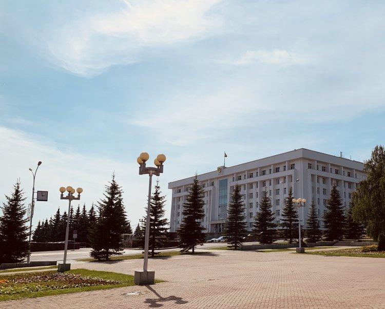 Радий Хабиров поручил в течение месяца апробировать приложение «Лесная карта»
