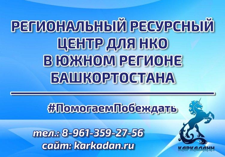 Более 3 млн рублей получат НКО Стерлитамака из президентского фонда на реализацию социальных проектов