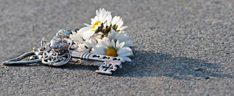 4 находки, которые принесут в дом счастье и удачу