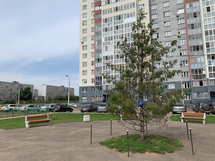 Жители Башкортостана оценивают качество ремонтных работ в рамках «Городской среды»