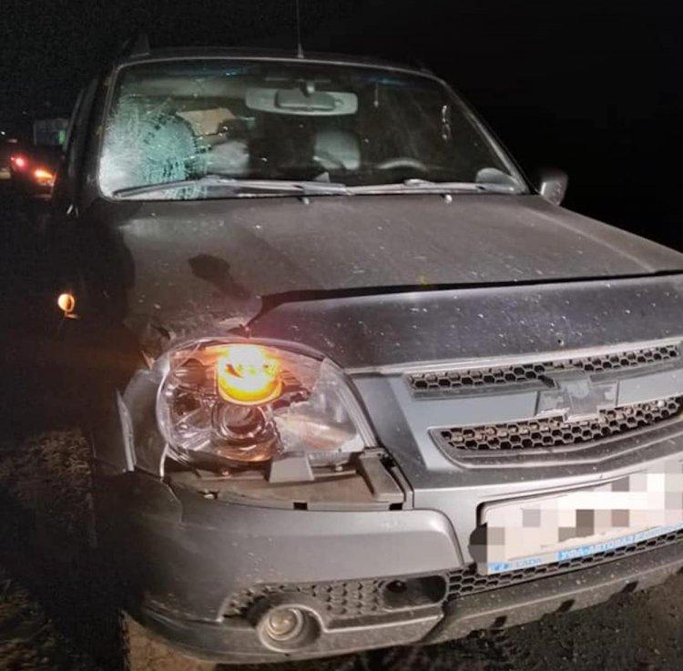 В Башкирии автомобиль сбил двух детей: одна девочка погибла