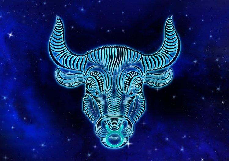 Гороскоп на 2020 год: астрологический прогноз для Тельца