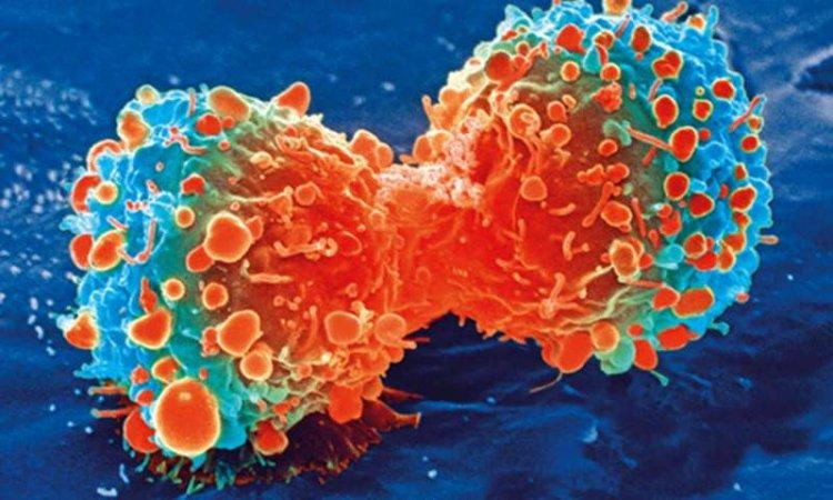 Ученые назвали самую главную причина возникновения рака