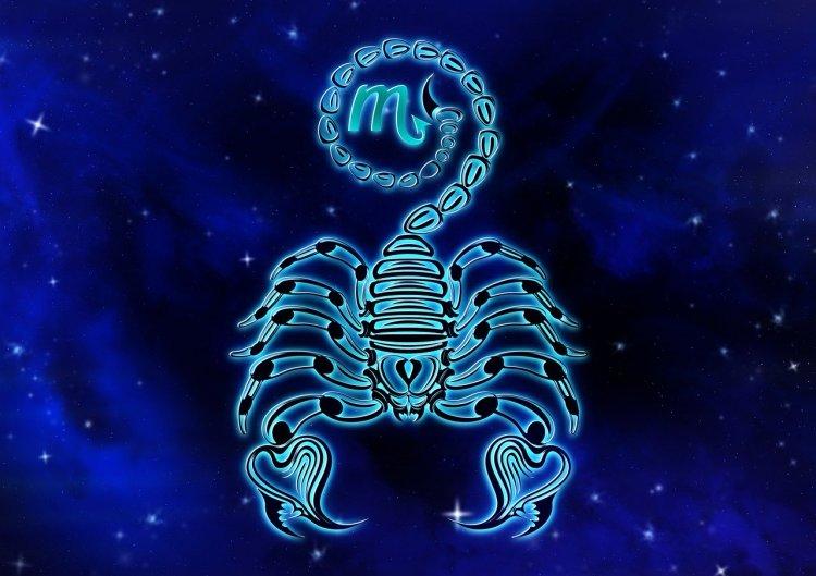 Гороскоп на год Крысы: как сложится 2020 год для Скорпионов