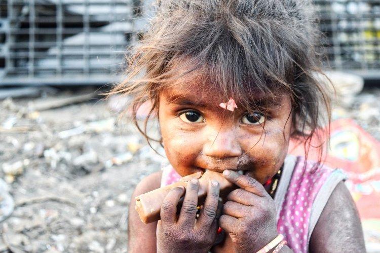 Предсказано наступление гибельного голода по всей Земле