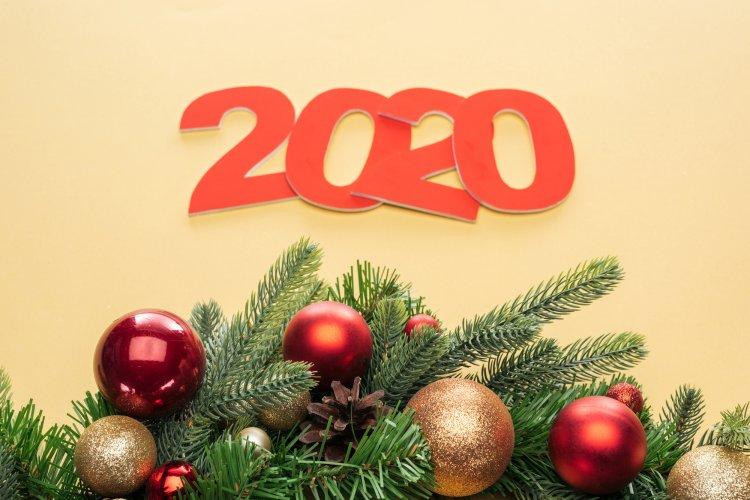 Гороскоп на 2020 год для тех, кто рожден в год Собаки