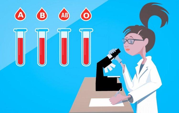 Что может сказать о тебе твоя группа крови?