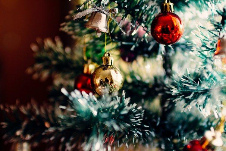 В Уфе стартовала акция по утилизации новогодних елей «Ёлки в щепки»