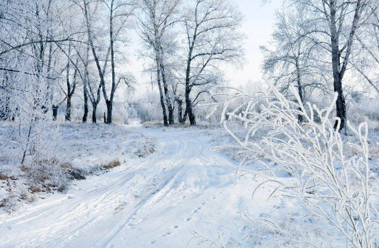 Погода бьет все рекорды: синоптики дали прогноз погоды на февраль