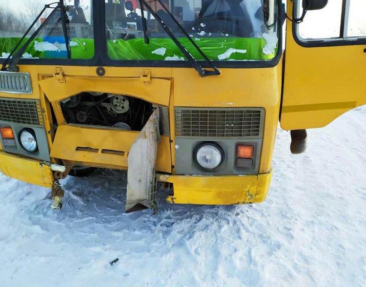 В Башкирии школьный автобус наехал на лошадь