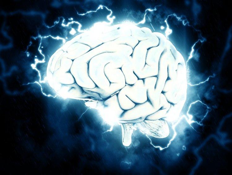 Назван способ замедлить старение мозга