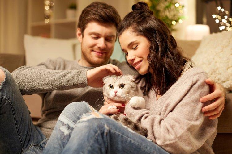 Кого больше любят коты — мужчин или женщин?