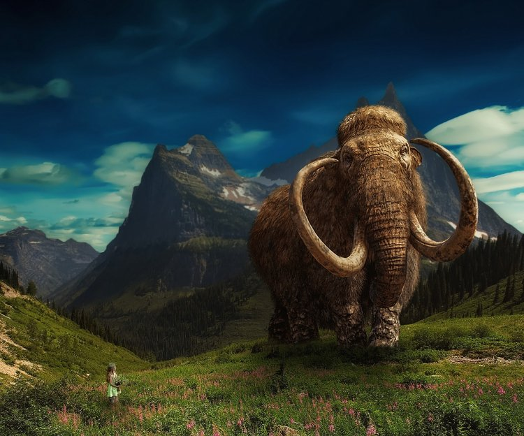Ученые выяснили, от чего вымерли последние мамонты на Земле