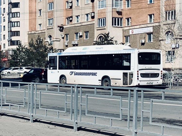 Путин поручил установить особый порядок передвижения граждан и транспорта