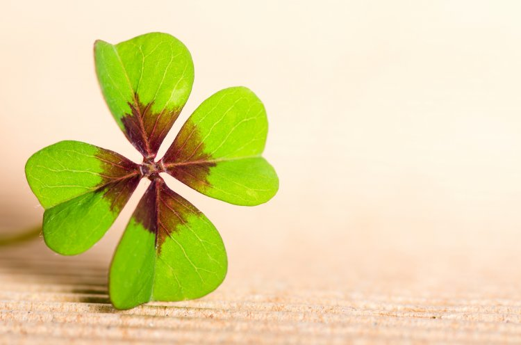 Три способа привлечь удачу и прервать черную полосу