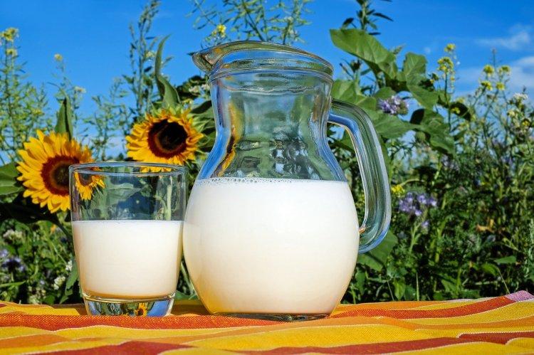 Ученые определили ежедневную норму молочных продуктов