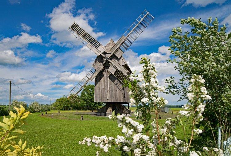 16 июня Лукьян-ветряк. Чего категорически нельзя делать в этот день