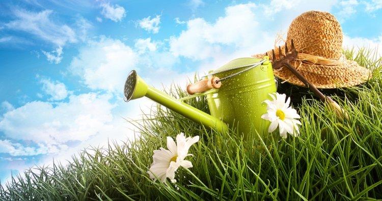 В Башкирии приняли закон о поддержке садоводов