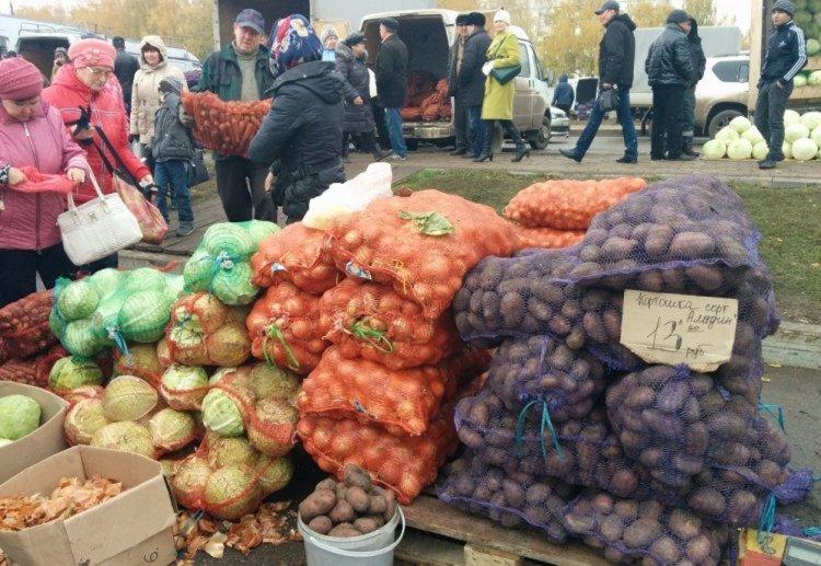 В Стерлитамаке перед «Стерлитамак-Ареной» прошла сельскохозяйственная ярмарка