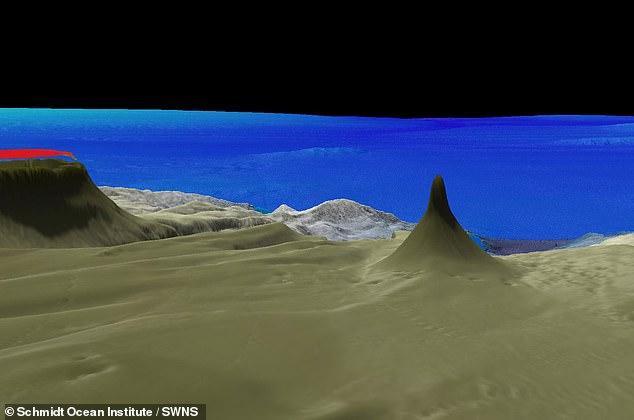 Превысивший высоту Эйфелевой башни коралловый риф нашли в Австралии