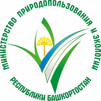 Минэкологии РБ: В Башкирии на реке Сарыяз обнаружили загрязнение нефтепродуктами