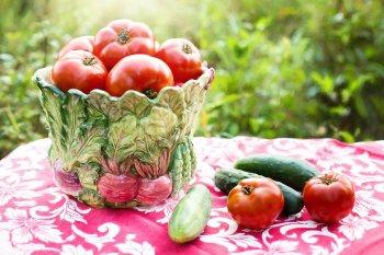 Помидоры будут быстро расти, если поливать рассаду по особому рецепту