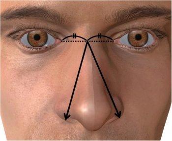 Basic and Clinical Andrology: На лице человека показан размер мужского достоинства