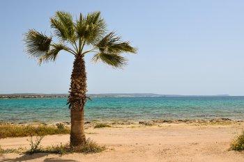 АТОР разъяснила порядок въезда туристов из России на Кипр