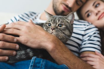 Группа учёных выяснили, как на самом деле относятся к людям кошки