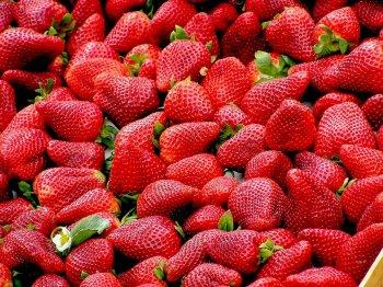 Грядки будут ломиться от крупных и ароматных ягод, если опрыскать клубнику этим простым средством