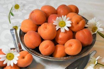 Теледоктор Мясников назвал косточки абрикоса и персика опасными для детей
