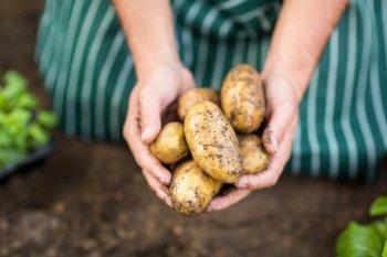 Ведро картофеля с куста! Соблюдайте эти простые правила и устанете собирать урожай