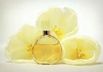 Названы способы быстро отличить оригинальный парфюм от подделки