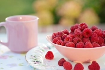 Гастроэнтеролог Бережная предупредила граждан в России о возможном отравлении садовыми ягодами