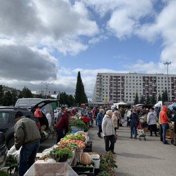 Уфимцы обратились к главе Башкирии с просьбой оставить фермерские ярмарки у Дворца спорта