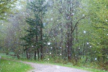 В выходные дни в Башкирии местами пройдут дожди со снегом
